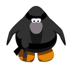 ninja-peng.png
